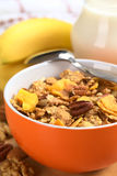 Cereal do Wholewheat com microplaquetas e porcas da banana Imagem de Stock