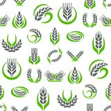 Cereal ears and grains agriculture industry seamless pattern background design vector food illustration organic natural. Cereal ears and grains seamless pattern Royalty Free Stock Photography