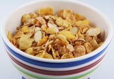 Cereal en tazón de fuente Fotografía de archivo