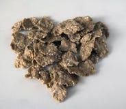 Cereal entero del grano Fotos de archivo libres de regalías