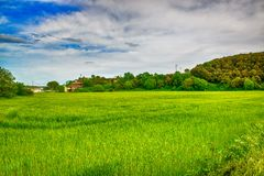 Cereal field in Catalonia, Spain Stock Photography