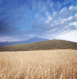 Cereal Field, Layered Mountains And Cloudscape Stock Photography