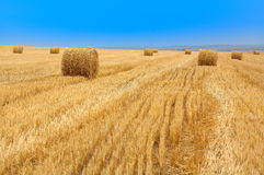 Cereal field with straw bales. And the blue sky stock photos
