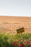 Cereal fields and poppies, with a placard Royalty Free Stock Images