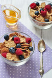 Cereal flakes with berries Royalty Free Stock Photo