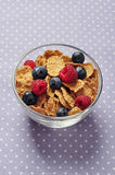 Cereal flakes with berry Royalty Free Stock Photography
