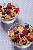 Cereal flakes with berry Stock Images