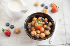 Cereal flakes with fresh berries Stock Image