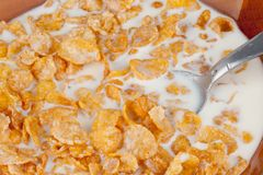 Cereal Flakes Royalty Free Stock Image