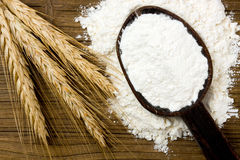 Cereal and flour. Rye ears and flour on wooden spoon Stock Photos
