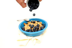Cereal And Fresh Blueberries Royalty Free Stock Photo