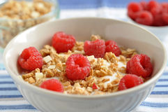 Cereal with fresh raspberry. Crunchy cereal with fresh raspberry Stock Photos