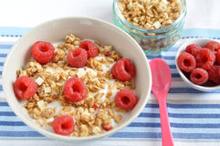 Cereal with fresh raspberry. Crunchy cereal with fresh raspberry Stock Image