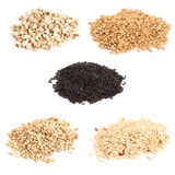 Cereal grain. Five kind of cereal grain Stock Image