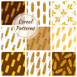 Cereal grain seamless patterns set Royalty Free Stock Photography