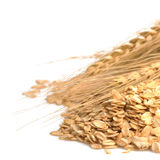 Cereal grain whole rolled oats Royalty Free Stock Photography