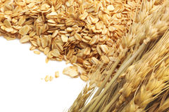 Cereal grain whole rolled oats on white background Royalty Free Stock Image