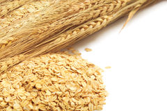 Cereal grain whole rolled oats on white background Stock Photography