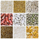 Cereal grains Royalty Free Stock Photo