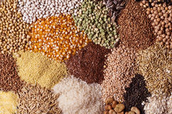 Cereal grains Royalty Free Stock Photos