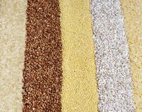 Cereal grains background Royalty Free Stock Photo