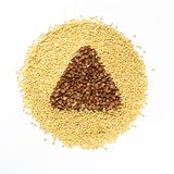 Cereal grains Royalty Free Stock Photography