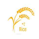 Cereal icon with rice. Royalty Free Stock Photography