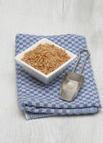 Cereal Kamut, Khorasan wheat, Triticum turgidum x polonicum. Ur cereal Kamut, Khorasan wheat, Triticum turgidum x polonicum Stock Images