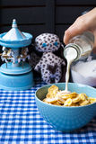 Cereal with milk for breakfast Royalty Free Stock Photos