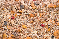 Cereal mix Stock Images