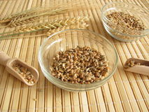 Cereal mixture stock photography