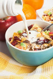 Cereal muesli with dried fruit Royalty Free Stock Photography