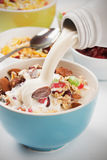 Cereal muesli with dried fruit Royalty Free Stock Photos