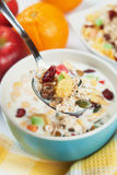 Cereal muesli with dried fruit Stock Photos