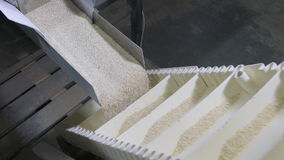 Cereal oatmeal crumbles into equal shares in a modern automatic machine. stock video