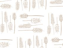 Cereal Plant Seamless Pattern. Organic wheat stems background illustration. Vector EPS8 Royalty Free Stock Image
