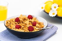 Cereal With Raspberries Royalty Free Stock Images