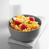 Cereal and Raspberries  Stock Photography
