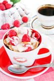 Cereal with raspberries Royalty Free Stock Photos