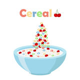 Cereal rings, cherry with bowl. Organic oatmeal breakfast with milk Stock Images