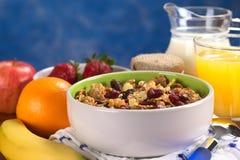 Cereal saudável, delicioso com porcas e Frui secado Foto de Stock Royalty Free