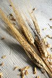 Cereal and seed fibre background texture bread Royalty Free Stock Photography