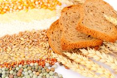 Cereal seeds and wheat ears Stock Photos