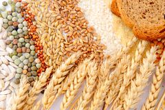 Cereal seeds and wheat ears Royalty Free Stock Photo