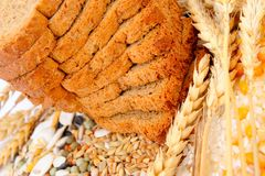 Cereal seeds and wheat ears Stock Photography