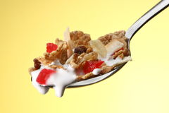 Cereal on spoon. Milk dripping from spoon filled with serial Royalty Free Stock Image