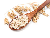 Cereal on a spoon stalk of oats isolated on white background Royalty Free Stock Photos