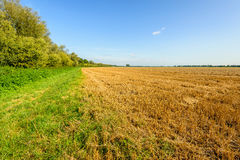 Cereal stubble field on a sunny day in the summer season Stock Photography