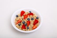 Cereal tostado de la avena con las fresas y los arándanos Imagen de archivo libre de regalías