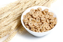 Cereal and Wheat ears Royalty Free Stock Photos